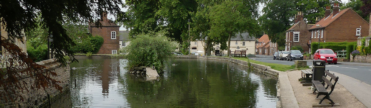 Mill Beck Pond